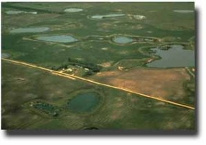 Prairie Potholes - Wetlands. Photo from US EPA